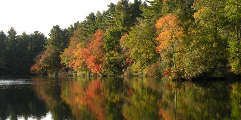Fall Reflection October 5, 2013 (photo courtesy of Diane Hallett)